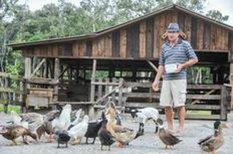 Tarciso Janning alimenta os animais do rancho (Agencia RBS/Rodrigo Philipps)