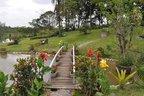 Quesitos avaliados na competição incluem harmonia, ornamentação e manutenção dos jardins (Divulgação/Arquivo Pessoal)