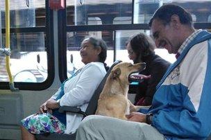 Passageiros se divertiram com a presença da cachorra (Arquivo pessoal/Marcela Güther)