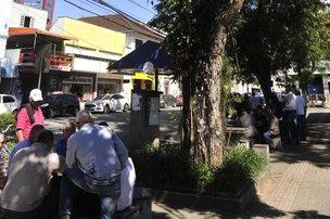 Quarteto joga dominó à sombra de uma árvore da praça Nereu Ramos, no Centro de Joinville (Agencia RBS/Leo Munhoz)