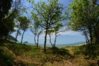 Trilhas das Praias do Cabeço e Praia Grossa, em Itapema, integram o roteiro (Agencia RBS/Marcos Porto)