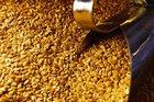Lojas de integrais são beneficiadas pela maior procura por grãos e cereais a granel (Agencia RBS/Adriana Franciosi)