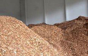 Empresa optou pelo cavaco do eucalipto por ser um processo já bem desenvolvido (Malwee/divulgação)
