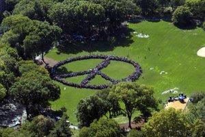 Mutirão no Central Park (AFP/FLYNYON)