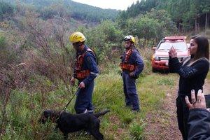 Cão farejador de Curitibanos auxiliou nas buscas (Divulgação/Polícia Civil)