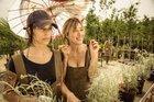 As atrizes Micaela Ramazzotti (E) e Valeria Bruni Tedeschi est�o no elenco da com�dia dram�tica Loucas de Alegria (Divulga��o/imovision)