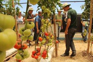 Feira exibe novidades tecnológicas pensadas para os pequenos produtores (Divulgação/CooperAlfa)