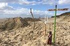 Uma espécie de memorial improvisadol foi montado na areia para marcar o local em que o animal foi localizado (Zero Hora/Camila Kosachenco)