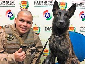 (Divulgação/Polícia Militar de Blumenau / Divulgação)