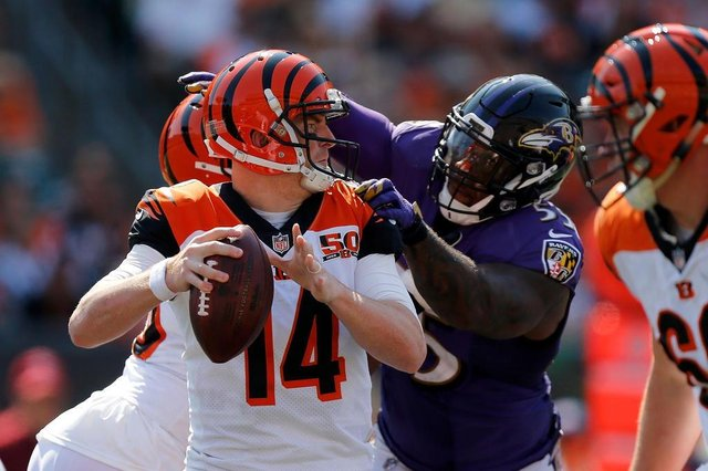 Baltimore Ravens v Cincinnati BengalsCINCINNATI, OH - SEPTEMBER 10: Terrell Suggs #55 of the Baltimore Ravens sacks Andy Dalton #14 of the Cincinnati Bengals during the fourth quarter at Paul Brown Stadium on September 10, 2017 in Cincinnati, Ohio.   Michael Reaves/Getty Images/AFPEditoria: SPOLocal: CincinnatiIndexador: Michael ReavesSecao: American FootballFonte: GETTY IMAGES NORTH AMERICAFotógrafo: STR