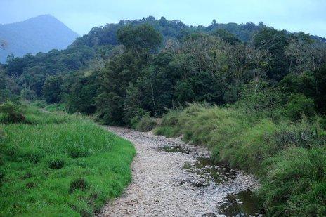 Volume de água em alguns trechos do rio Piraí está muito abaixo do normal (A Notícia/Maykon Lammerhirt)