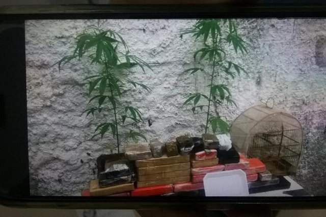 Policia Militar apreende drogas