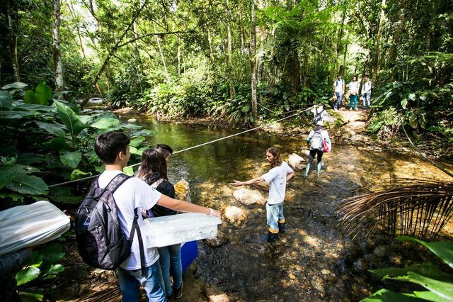 Parque das Nascentes, Blumenau, Instituto Parque das Nascentes (Ipan), visitantes, educação ambiental