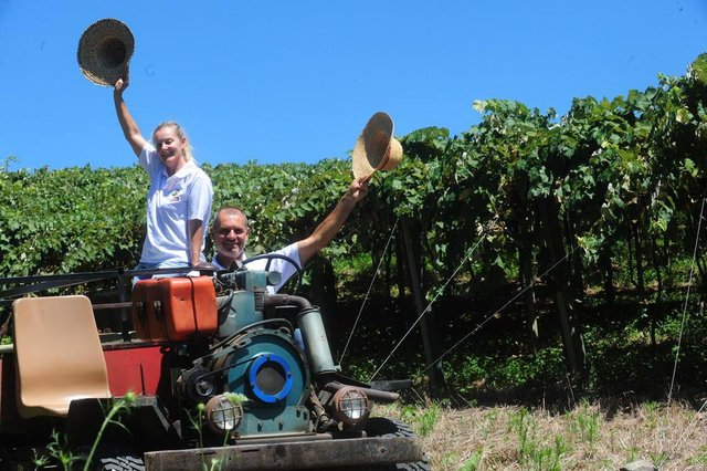 FLORES DA CUNHA, RS, BRASIL (09/01/2018) Propriedade Rural de Fernandes Muraro. Fernandes Muraro e a mulher Vania Branchini trabalham com o turismo rural.  (Roni Rigon/Pioneiro).