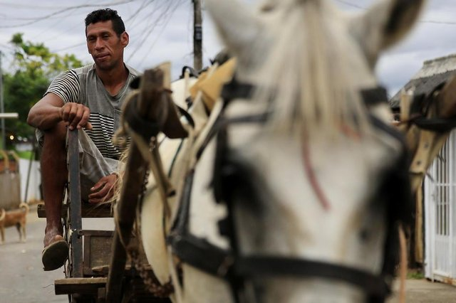 CANOAS, RS, BRASIL, 15-01-2018: Juliano Gonçalves Rodrigues, dono do cavalo Dragão, no bairro Mathias Velho. A prefeitura de Canoas pretende proibir circulação de carroças e cavalos na cidade através do projeto Cavalo de Lata. Para isso, pretende ofertar bicicletas para os carroceiros recicladores. (Foto: Mateus Bruxel / Agência RBS)