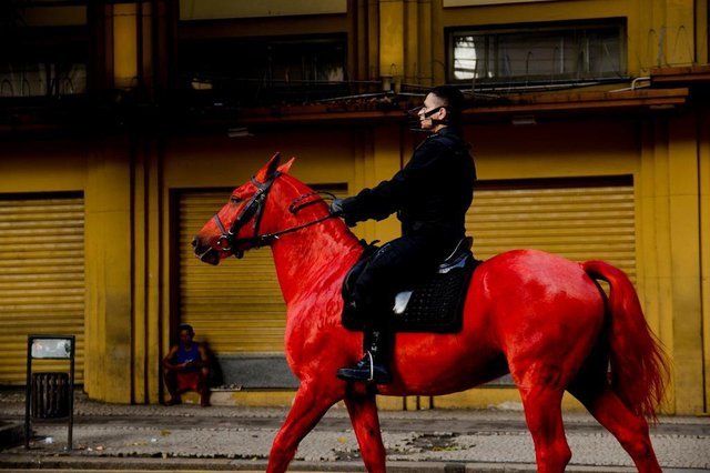 Performance Palomo, da artista paraense Berna Reale