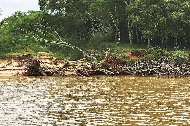Extração de areia extensiva no Rio Jacuí tem resultado em danos ambientais como queda de árvores e de parte das margens para dentro do curso de água.