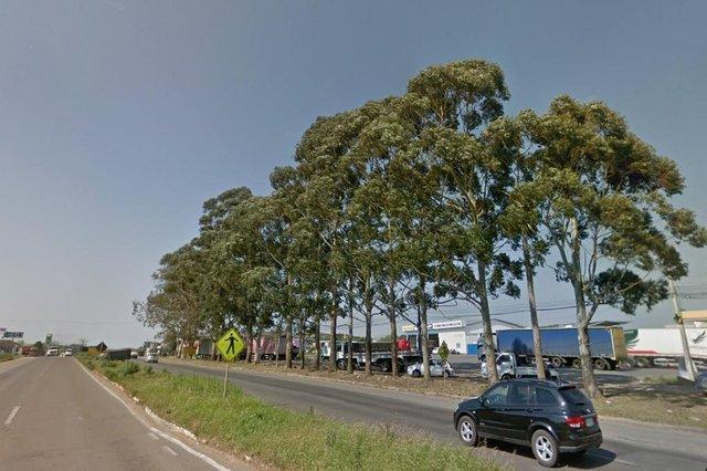 CAXIAS DO SUL, RS, BRASIL, 02/08/2018. Foto do Google Street View que mostra como árvores que ficavam no pátio do posto localizado no trevo de acesso á Forqueta, nas margens da ERS-122, KM 65. Os eucaliptos foram cortados devido as obras para melhoria do acesso. (Googles Street View/Divulgação)