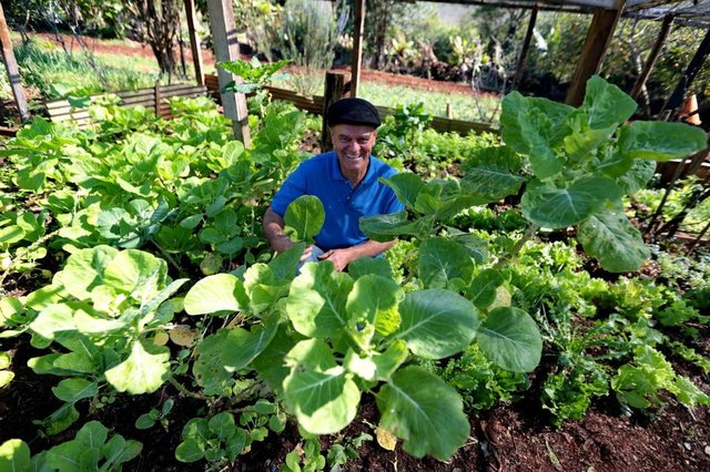 CACHOEIRINHA-RS- BRASIL- 14/08/2018- famílias que participam do Projeto Semear, que utiliza áreas onde eram feitos descartes irregulares para plantar orgânicos. As famílias são responsáveis por plantar, cuidar do local e podem ficar com o que produzem ou vender. Orvídeo Gustavo, no quadro de hortaliças.  FOTO FERNANDO GOMES/ DIARIO GAUCHO.