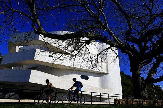 PORTO ALEGRE, RS, BRASIL, 19-09-2018: Ingazeiro na orla do Guaíba, em frente ao Museu Iberê Camargo. Roteiro de árvores nativas em Porto Alegre. (Foto: Mateus Bruxel / Agência RBS)
