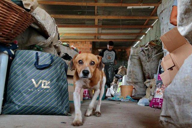 ALVORADA-RS- BRASIL- 15/02/2019- Priscila Alves Silva, recolhe material reciclável para ajudar animais de rua. Priscila no depósito de reciclagem. FOTO FERNANDO GOMES/ DIÁRIO GAÚCHO.
