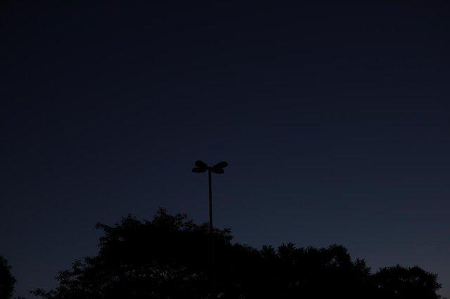 PORTO ALEGRE, RS, BRASIL - 28.11.2019 - Escuridão no Parque Marinha. (Foto: Isadora Neumann/Agencia RBS)