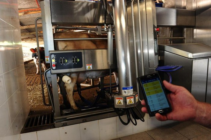 Gérson Henrique Neumann consegue acompanhar a produção de leite pelo celular