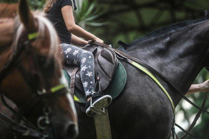 Crianças em contato com os cavalos no 4º RPMon