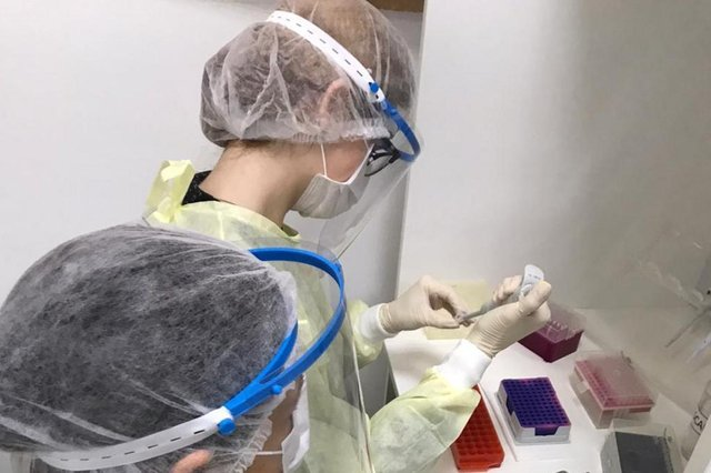 Força-tarefa realiza quase mil testes para coronavírus em Santa Maria<!-- NICAID(14516289) -->