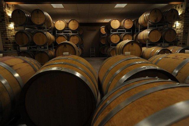 FLORES DA CUNHA, RS, BRASIL, 11/08/2020 - Durante pandemia aumenta as vendas de vinho. reportagem para caderno de economia +Serra. NAS FOTOS: vinícola Viapiana. (Marcelo Casagrande/Agência RBS)<!-- NICAID(14565620) -->
