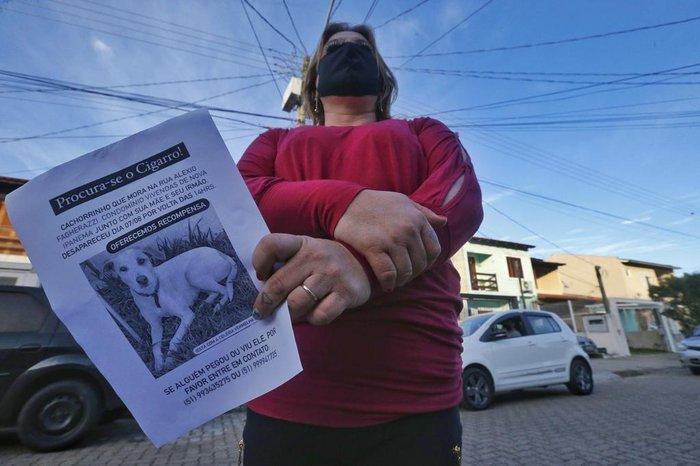 Moradores do condomínio estão até dando uma recompensa a quem localizar o cãozinho
