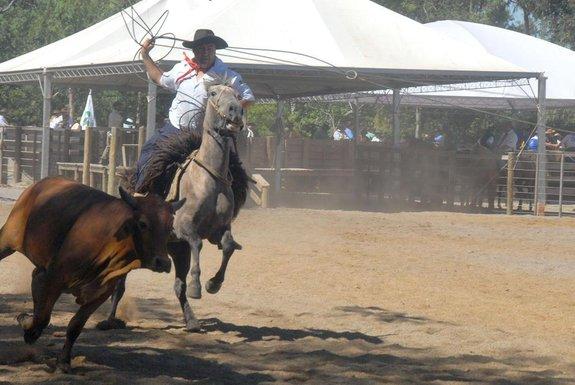 *** RODEIO/TATI 1 ***Abertura do 21ª Rodeio Crioulo Nacional de Caxias do Sul.