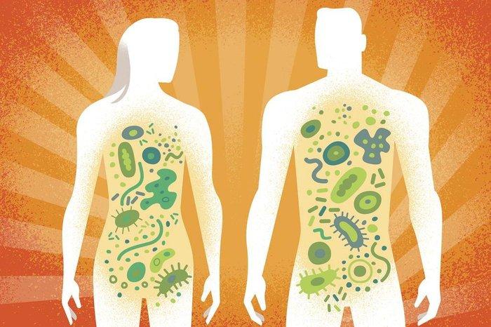Resultado de imagem para microbioma