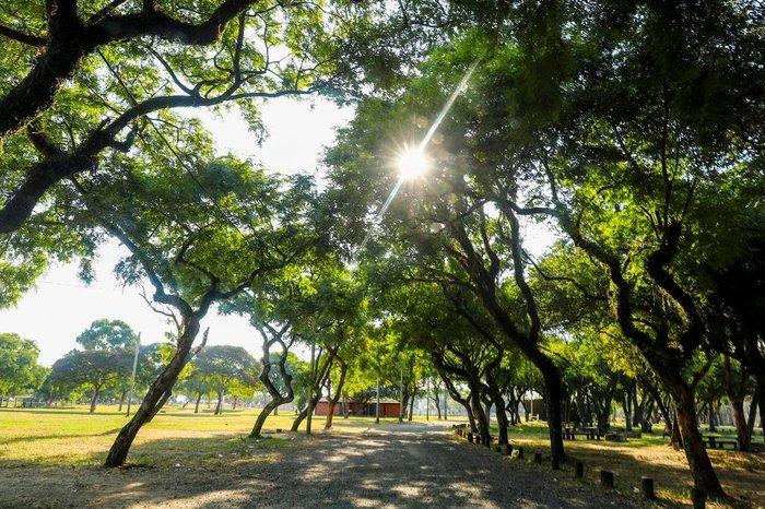 Acampamento Farroupilha não sairá do Parque Harmonia, afirma