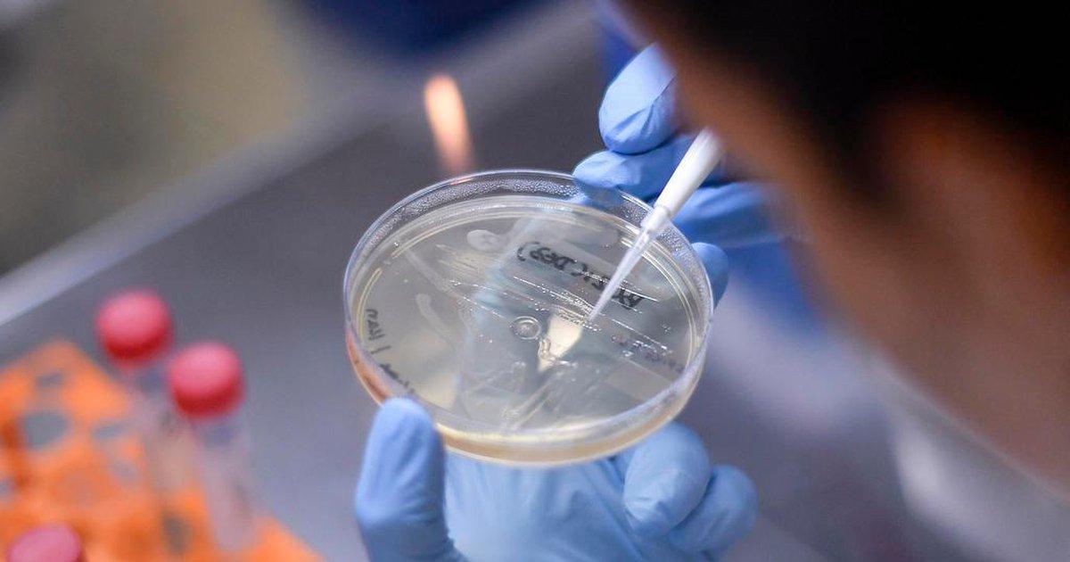 Teve contato com contaminados por coronavírus? Saiba quando tem direito a fazer o teste gratuito em Porto Alegre – GauchaZH