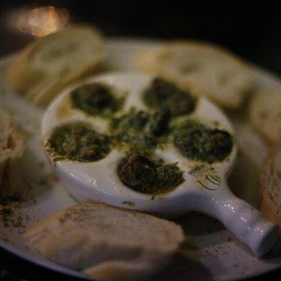 Rã, jacaré, escargot e peixe-sapo: casal deixa escritórios na Capital e abre restaurante com carnes exóticas em Capão da Canoa