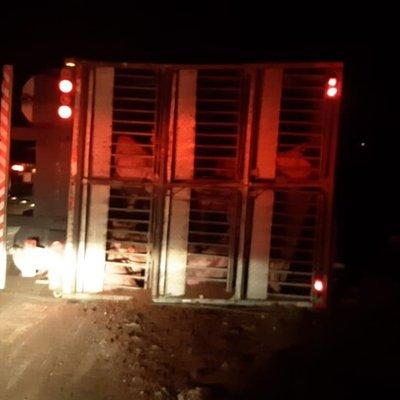 Motorista fica ferido após caminhão carregado de porcos tombar no noroeste do RS