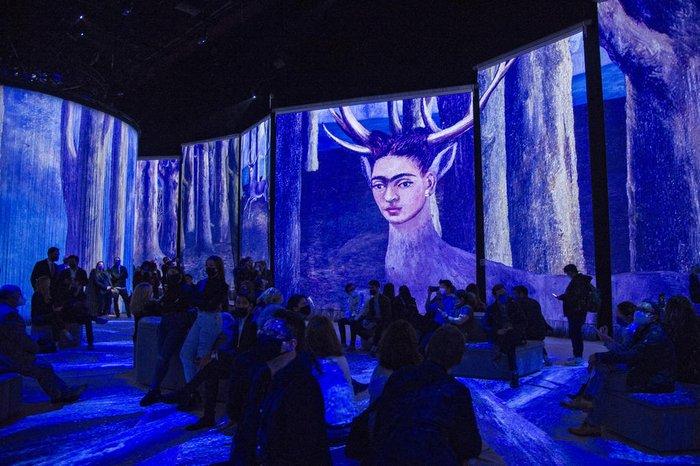 Exposição digital recria a vida e obra da pintora mexicana Frida Kahlo;  confira fotos | GZH